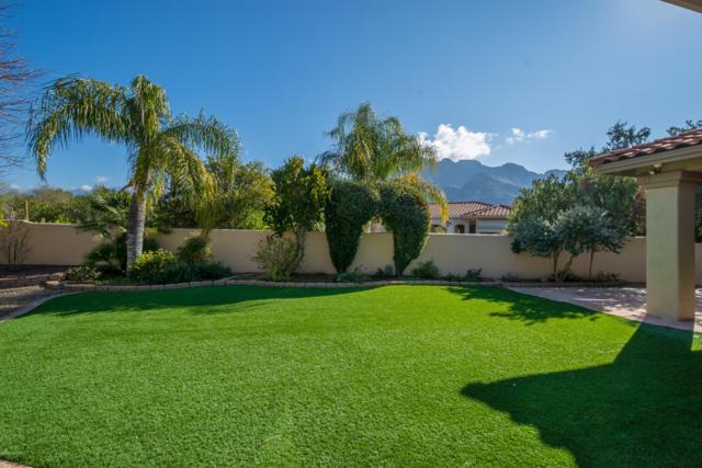 9782 N Golden Sun Drive, Oro Valley, AZ 85737 (#21901778) :: Stratton Group