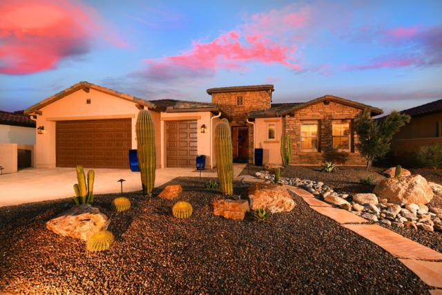 31901 S Flat Rock Drive, Oracle, AZ 85623 (#21901803) :: Long Realty Company
