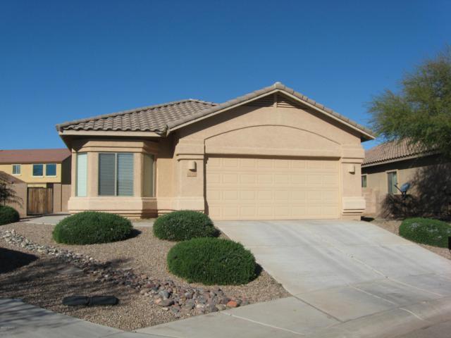 11157 W Coppertail Drive, Marana, AZ 85653 (#21901848) :: Realty Executives Tucson Elite