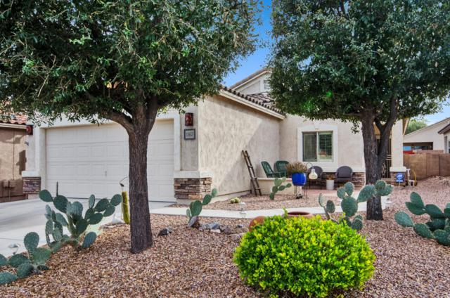 1367 W Calle Luis Maria, Sahuarita, AZ 85629 (MLS #21901901) :: The Property Partners at eXp Realty