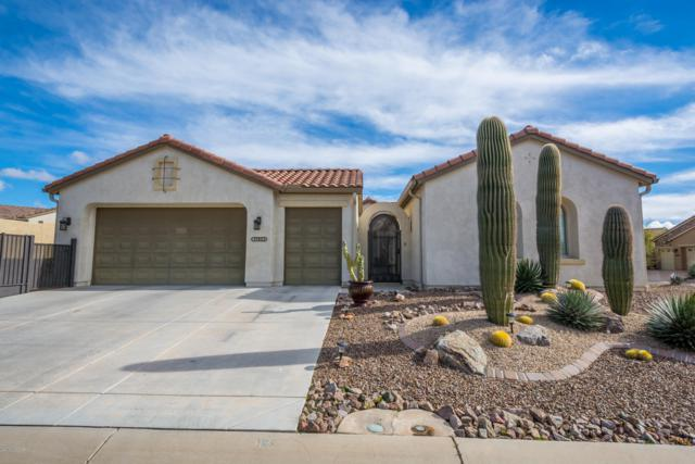 31953 S Misty Basin Road, Oracle, AZ 85623 (#21901911) :: Long Realty Company