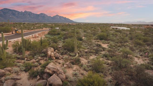 1806 W Tortolita Mountain Circle #587, Oro Valley, AZ 85755 (#21901921) :: Long Realty - The Vallee Gold Team