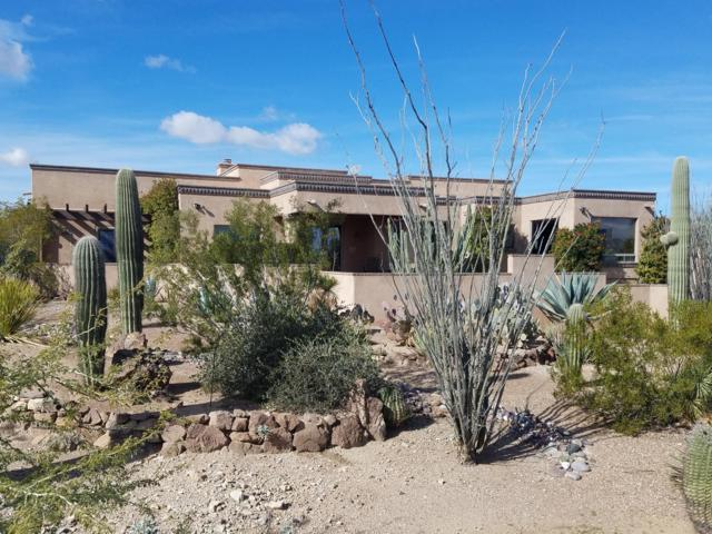 5553 N Park Ridge Place, Tucson, AZ 85743 (#21901971) :: The Josh Berkley Team