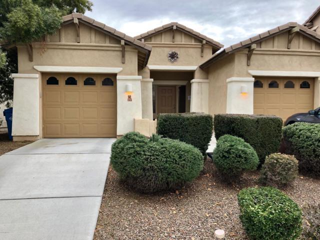 245 W Calle Gota, Sahuarita, AZ 85629 (MLS #21902011) :: The Property Partners at eXp Realty