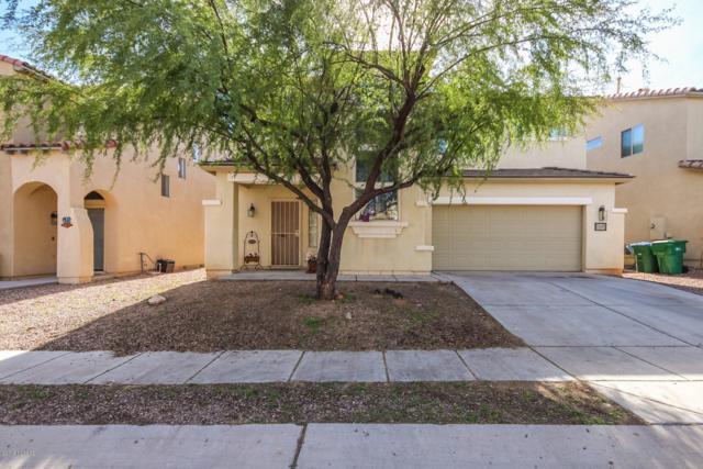 146 E Camino Del Abedul, Sahuarita, AZ 85629 (MLS #21902034) :: The Property Partners at eXp Realty