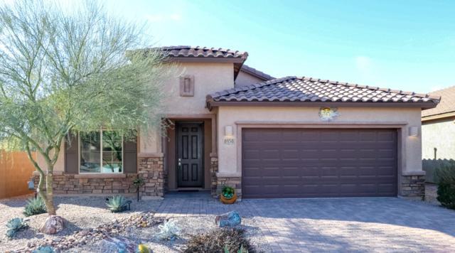 8158 N Circulo El Palmito, Tucson, AZ 85704 (#21902038) :: Long Realty Company