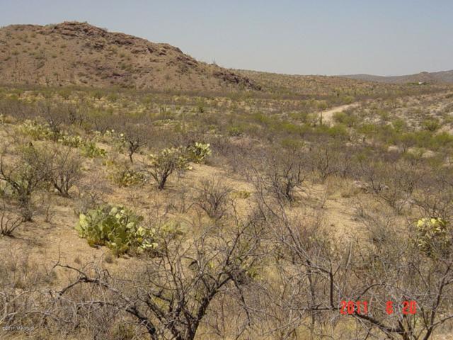 80 S X9 Ranch #80, Vail, AZ 85641 (#21902256) :: Long Realty Company