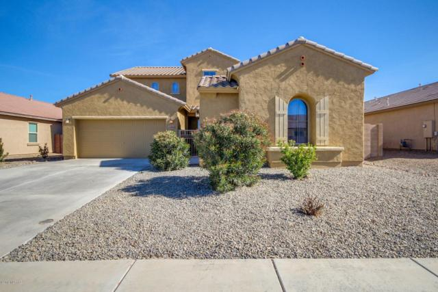 12860 N White Fence Way, Marana, AZ 85653 (#21902329) :: Long Realty Company