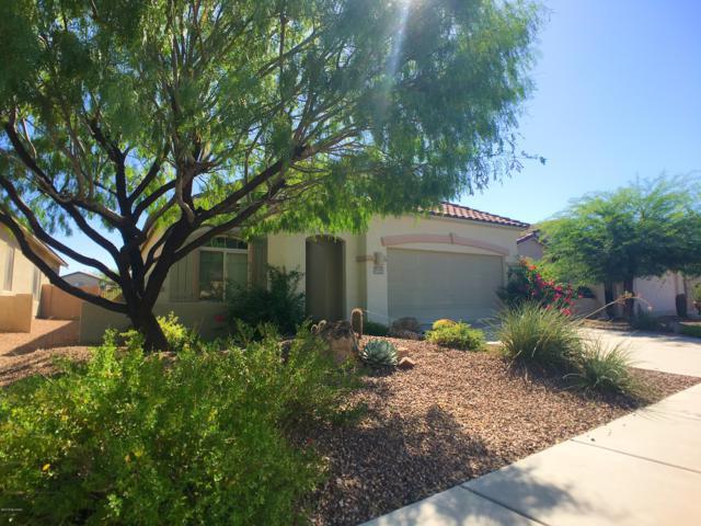 12904 N Salt Cedar Drive, Oro Valley, AZ 85755 (MLS #21902384) :: The Property Partners at eXp Realty