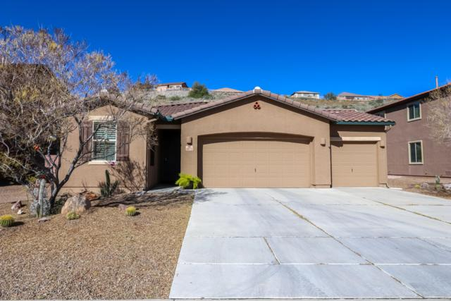 38971 S Running Roses Lane, Tucson, AZ 85739 (#21902399) :: The Josh Berkley Team