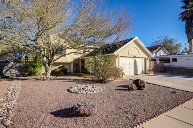 3356 W Placita De La Bajada, Tucson, AZ 85746 (#21902636) :: Gateway Partners at Realty Executives Tucson Elite
