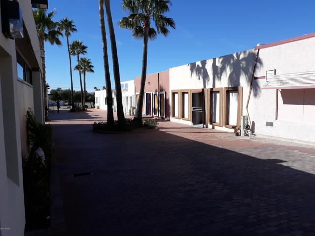 3055 S Kinney Road, Tucson, AZ 85713 (#21902757) :: Long Realty Company