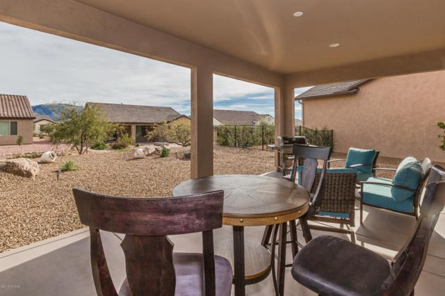 32847 S Hyrax Lane, Oracle, AZ 85623 (#21902833) :: Long Realty Company