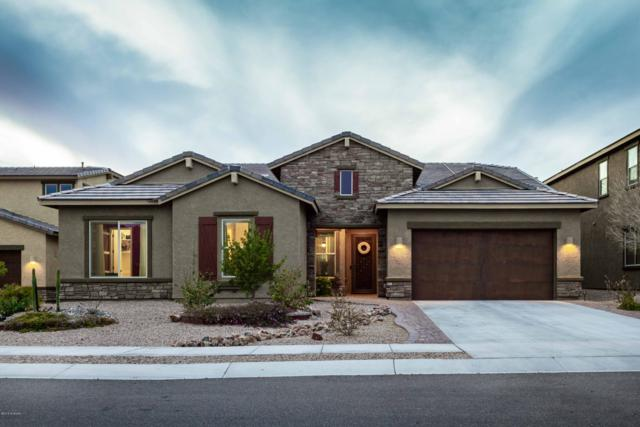 10967 N Delphinus Street, Oro Valley, AZ 85742 (#21902878) :: Long Realty - The Vallee Gold Team