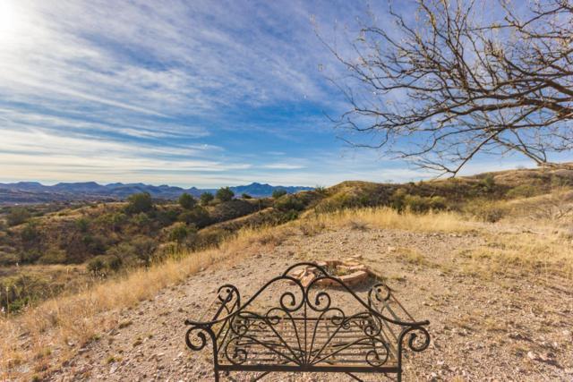 124 Wood Canyon Road, Patagonia, AZ 85624 (#21903005) :: Long Realty Company