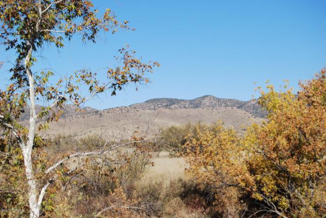 E Turkey Creek Road N/A, Pearce, AZ 85625 (#21903339) :: Long Realty - The Vallee Gold Team