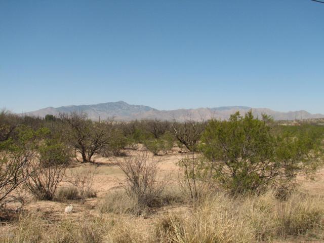 1.50 Acres N Alvie Lee Lane, Benson, AZ 85602 (#21903568) :: The Josh Berkley Team