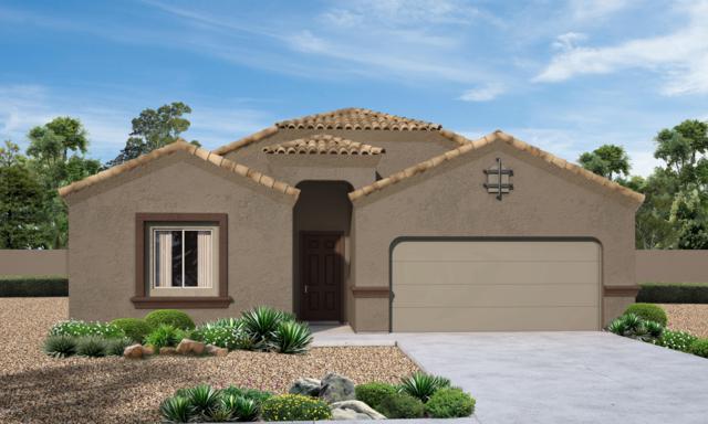 9361 W Gambel Oak Lane, Marana, AZ 85653 (#21903703) :: Long Realty Company