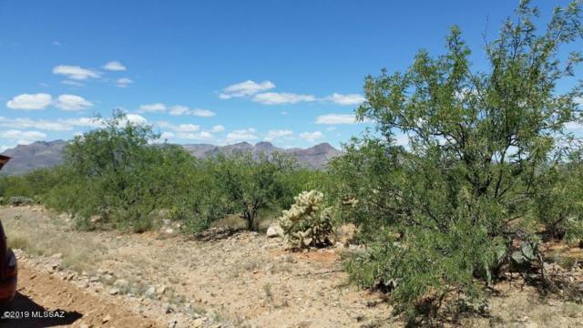 N Adams Street Street #1, Nogales, AZ 85621 (#21904060) :: Long Realty - The Vallee Gold Team