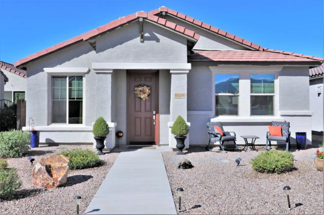 10159 S Tilbury Drive, Vail, AZ 85641 (#21904217) :: The KMS Team