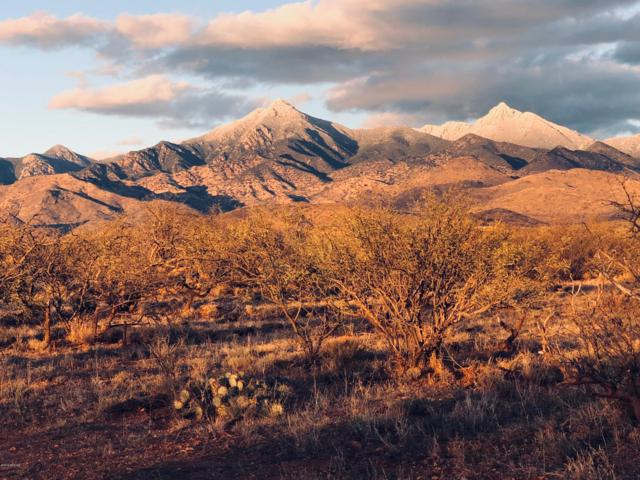 TBD Camino Nacozari #57, Tubac, AZ 85646 (#21904230) :: Long Realty Company