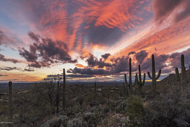 13661 E Sahuaro Sunset Road #16, Tucson, AZ 85749 (#21904257) :: The Josh Berkley Team