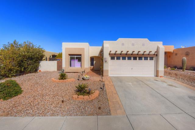 10411 E Thunderbolt Drive, Tucson, AZ 85748 (#21904259) :: The Josh Berkley Team