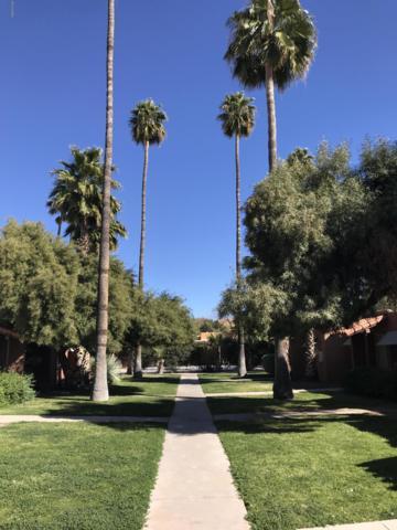 2950 N Alvernon #13103, Tucson, AZ 85712 (#21904419) :: The KMS Team