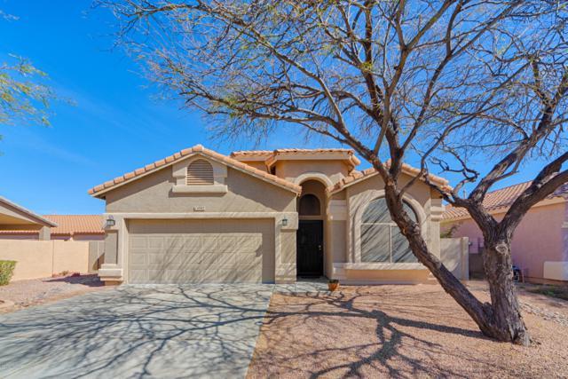 14987 S John Tyler Place, Sahuarita, AZ 85629 (#21904443) :: Long Realty Company