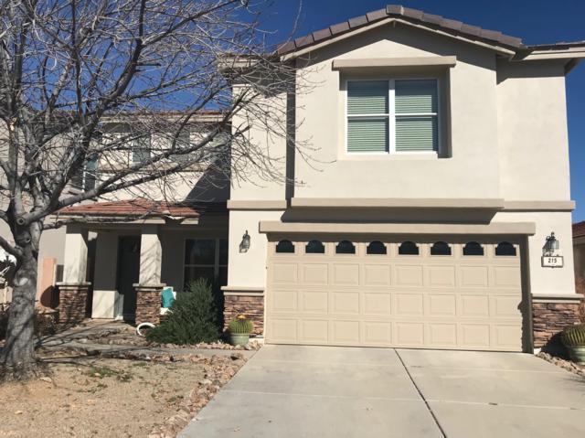 215 E Scarlet Maple Street, Sahuarita, AZ 85629 (#21904444) :: Long Realty Company