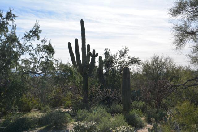 Pecos Way #5, Tucson, AZ 85742 (#21904458) :: Gateway Partners at Realty Executives Tucson Elite