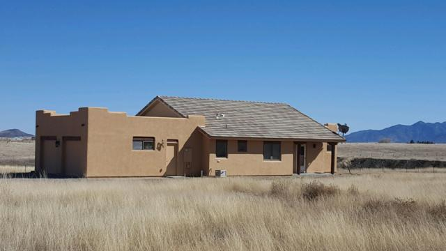 263 Lower Elgin Road, Sonoita, AZ 85637 (#21904512) :: Long Realty - The Vallee Gold Team