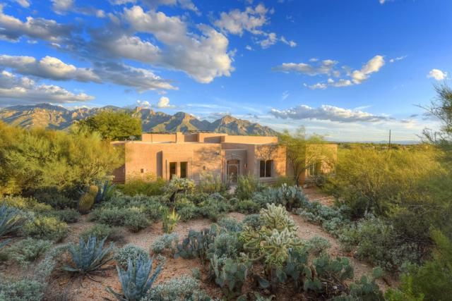 487 W Coyote Moon Place, Oro Valley, AZ 85755 (#21904603) :: Long Realty - The Vallee Gold Team