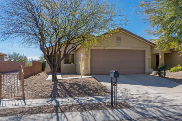 9986 E Country Shadows Drive, Tucson, AZ 85748 (#21904624) :: The Josh Berkley Team