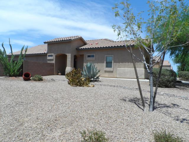 12217 N Gadwall Drive, Marana, AZ 85653 (#21904627) :: Long Realty - The Vallee Gold Team