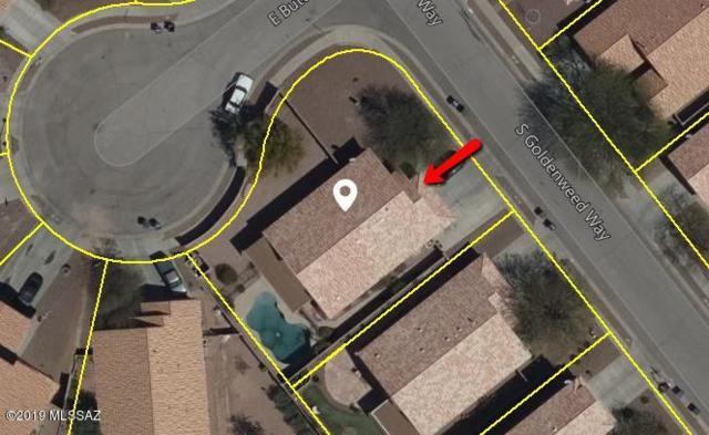 1006 S Goldenweed Way, Tucson, AZ 85748 (#21904630) :: The Josh Berkley Team