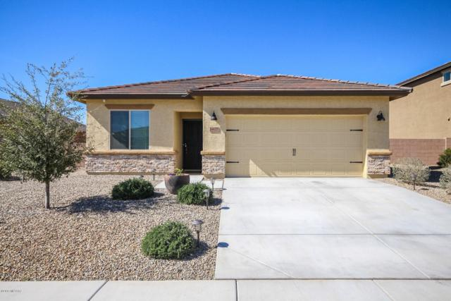 14127 N Stone Pendant Way, Marana, AZ 85658 (#21904684) :: Long Realty Company