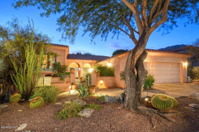 6487 N Desert Breeze Court, Tucson, AZ 85750 (#21904705) :: The Josh Berkley Team
