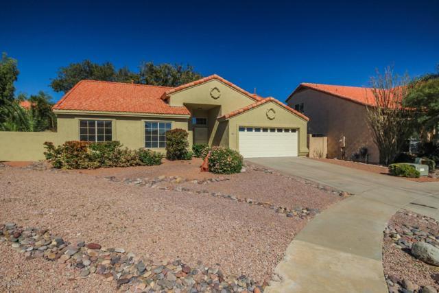 980 W Graythorn Place, Tucson, AZ 85737 (#21904716) :: The KMS Team