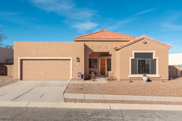 163 N Cheesebrush Avenue, Tucson, AZ 85748 (#21904728) :: The Josh Berkley Team