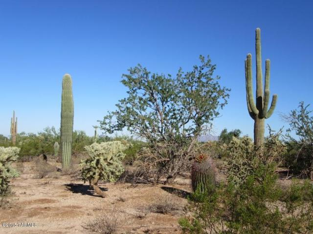 E Jacinto Road (20 Ac), Marana, AZ 85658 (#21904779) :: Long Realty - The Vallee Gold Team