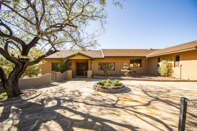 11600 E Summer Trail, Tucson, AZ 85749 (#21904816) :: Long Realty - The Vallee Gold Team