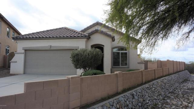 1013 W Leatherleaf Drive, Tucson, AZ 85755 (#21904825) :: The KMS Team