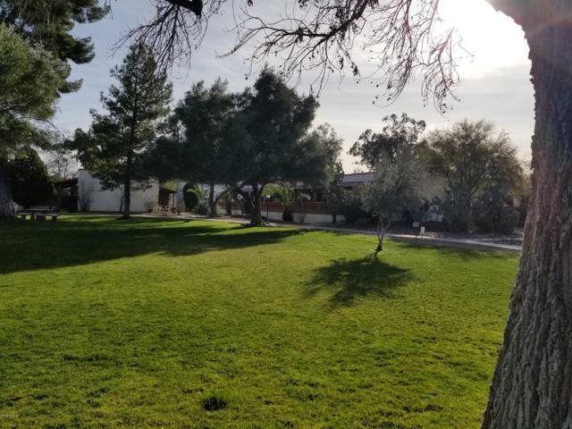 264  C S Paseo Pena, Green Valley, AZ 85614 (#21904847) :: Realty Executives Tucson Elite