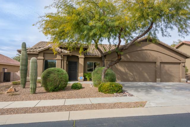 12843 N Paleozoic Drive, Marana, AZ 85658 (#21904872) :: Realty Executives Tucson Elite