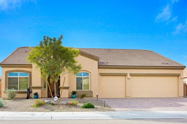 11045 W Snaketown Street, Marana, AZ 85658 (#21904877) :: Realty Executives Tucson Elite