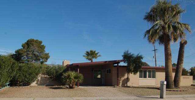 3237 S Tahoe Drive, Tucson, AZ 85730 (#21904888) :: The KMS Team