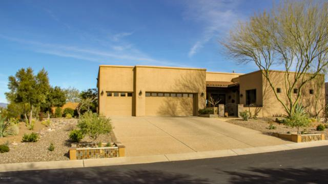 16917 S Orchid Flower Trail, Vail, AZ 85641 (#21904918) :: Realty Executives Tucson Elite