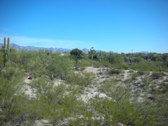4041 N San Simeon Drive #2, Tucson, AZ 85718 (#21904990) :: The KMS Team