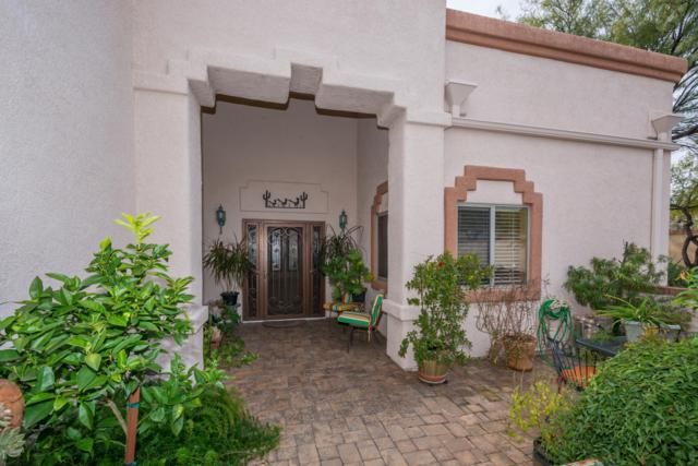 1395 W Cactus Moon Place, Oro Valley, AZ 85737 (#21905045) :: The KMS Team